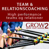 GROW2, Team og relationscoaching